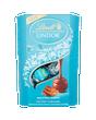 Lindt LINDOR Salted Caramel Truffles 200g